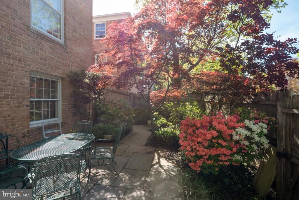 Landscaped patio - 4732 MASSACHUSETTS AVE NW, WASHINGTON