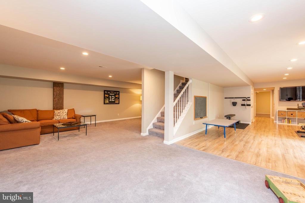 Basement / Recreation Room - 5117 NORTHERN FENCES LN, COLUMBIA