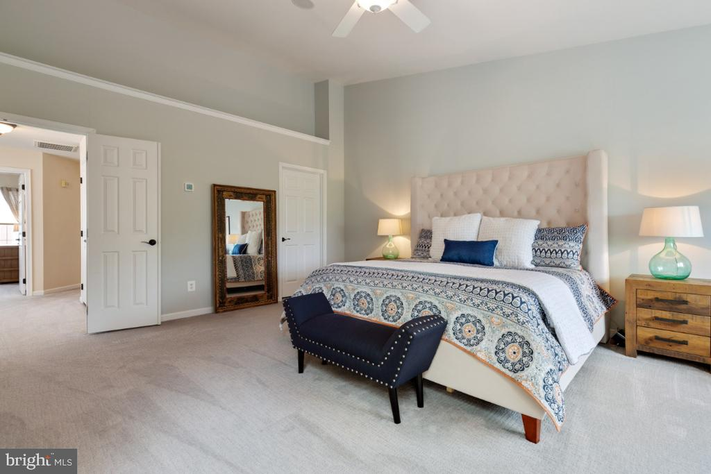 Master Bedroom Suite with Vaulted Ceiling - 43392 FRENCHMANS CREEK TER, ASHBURN