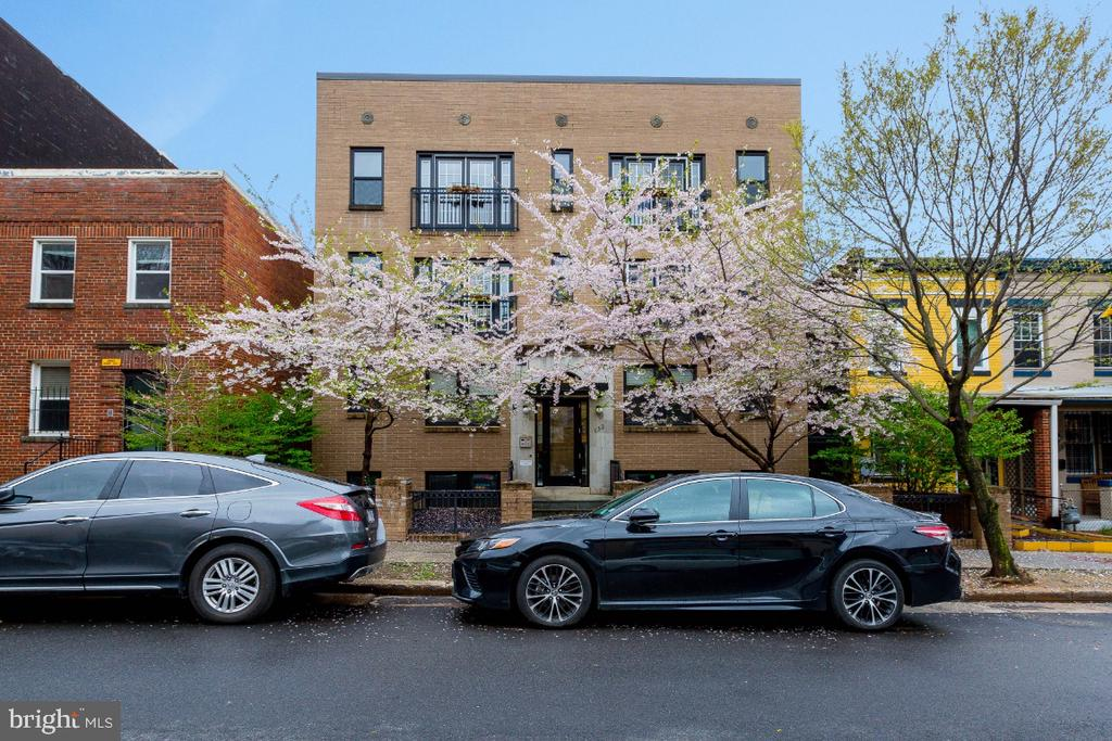 Stunning Cherry Blossoms - 732 LAMONT ST NW #303, WASHINGTON