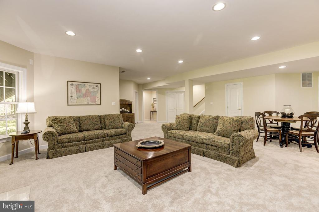 Lower level large recreation room - 43285 OVERVIEW PL, LEESBURG