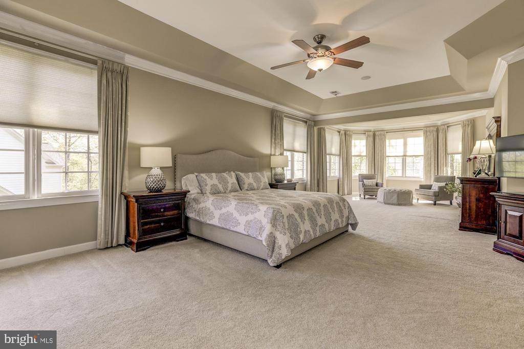 Master bedroom with ceiling fan into sitting area - 43285 OVERVIEW PL, LEESBURG