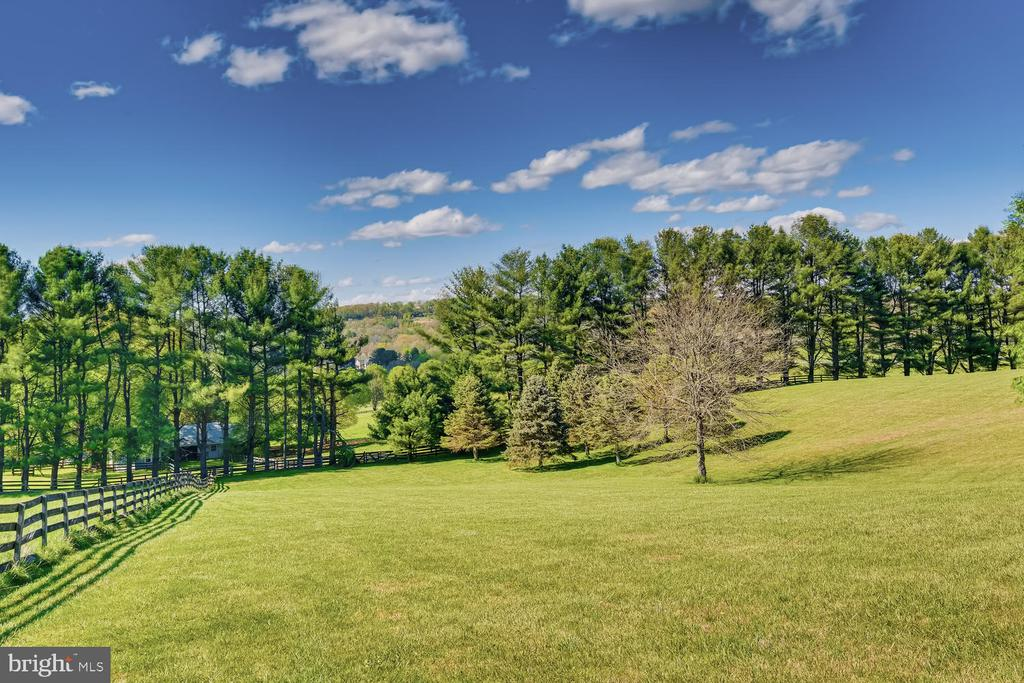 Rear facing pastoral views - 2200 GADD RD, COCKEYSVILLE