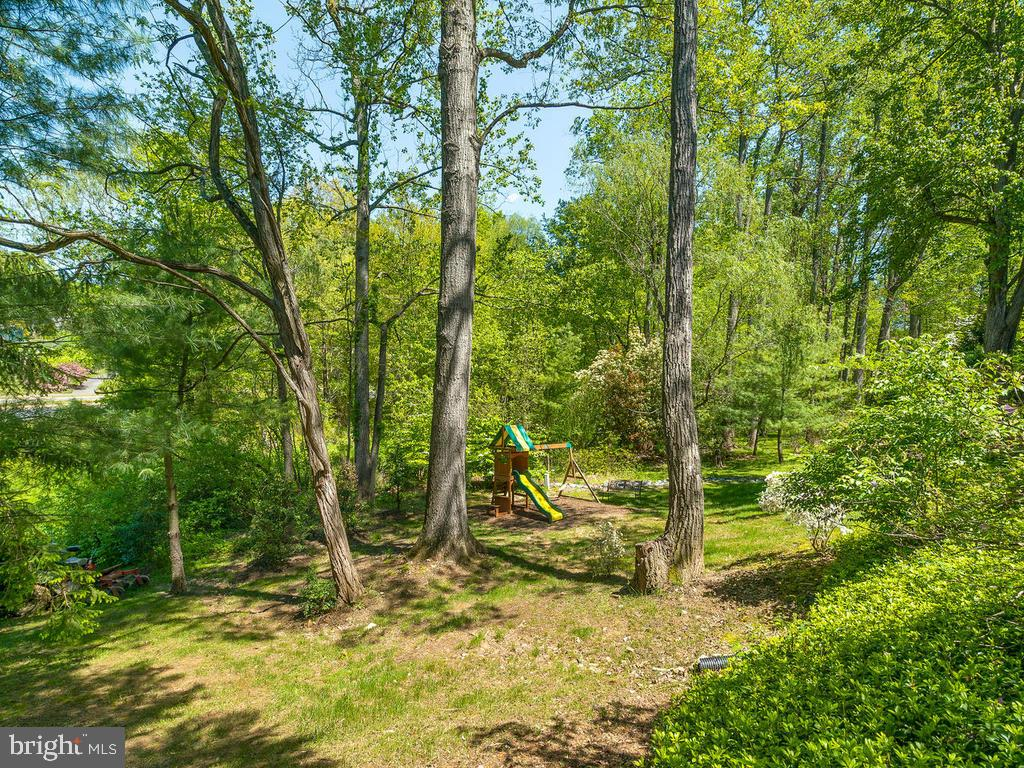 Half-acre+ lot backing and siding to common area! - 1281 AUBURN GROVE LN, RESTON