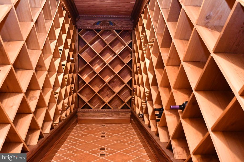 Wine Cellar - 79 MILLBROOK RD, STAFFORD