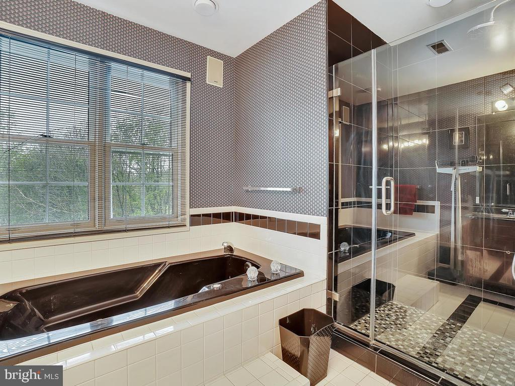 master bath with separate shower with new granite - 11667 FAIRMONT PL, IJAMSVILLE