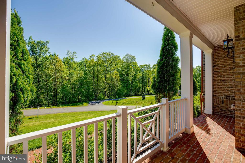 View From Your Front Porch - 15879 FROST LEAF LN, LEESBURG