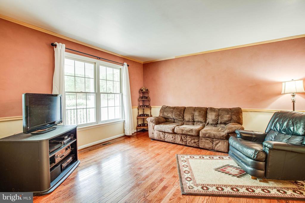 Family Room - main floor - 9521 RAPIDAN DR, FREDERICKSBURG