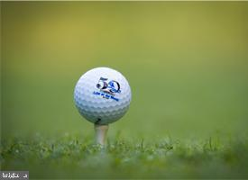 Waiting for you to Tee off! - 612 LAKEVIEW PKWY, LOCUST GROVE