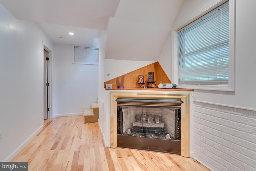 Corner propane fireplace - 6211 BRYN LN, MINERAL