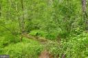 Creek boundary on north side - 345 GRIMSLEY RD, FLINT HILL