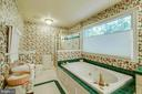 Master Bathroom - Pretty Tile and Wallpaper! - 12210 GLADE DR, FREDERICKSBURG