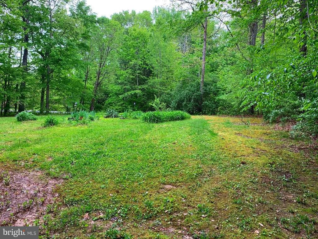 Plenty of Room for Your Garden! - 12210 GLADE DR, FREDERICKSBURG