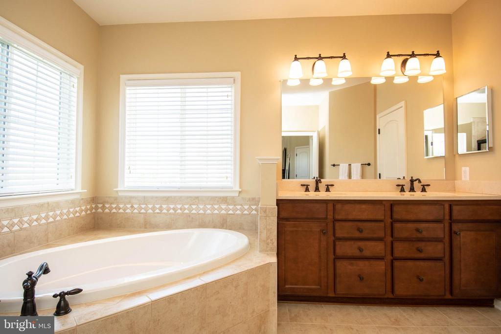 Master Bathroom - 42422 CHAMOIS CT, STERLING