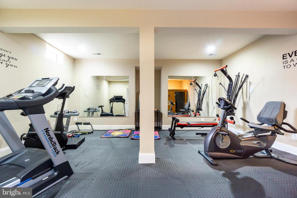 Exercise room in basement - 20120 BLACK DIAMOND PL, ASHBURN