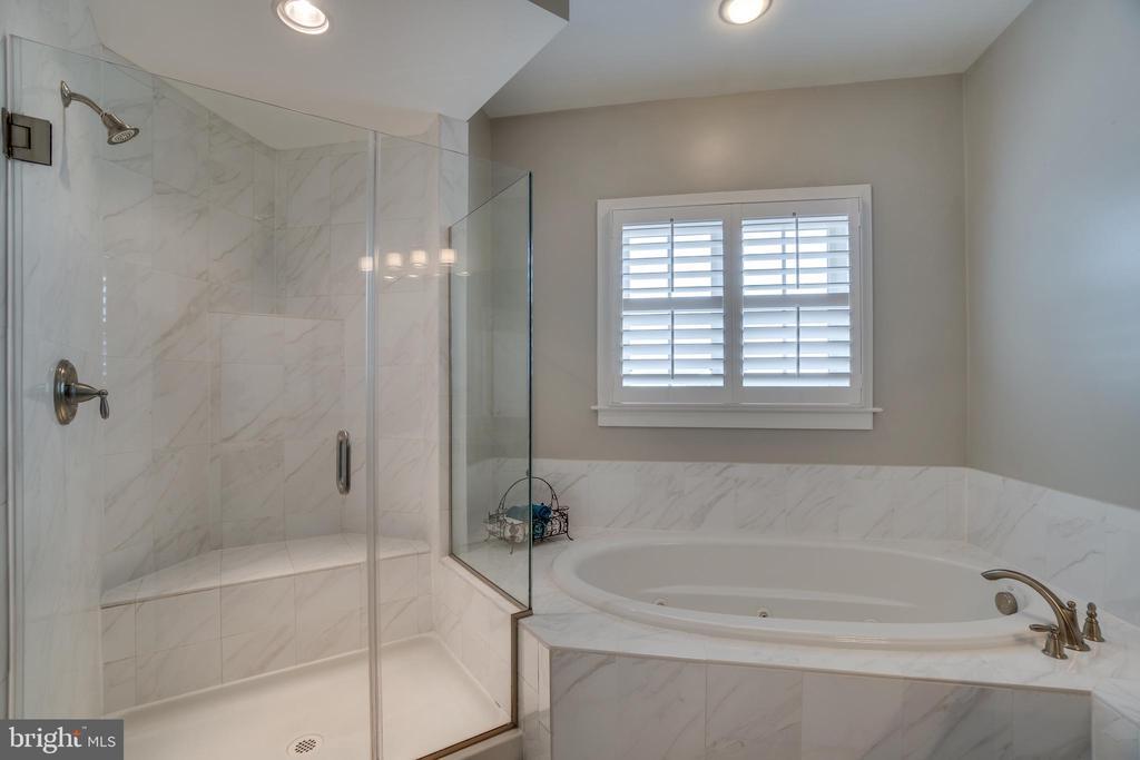 whirlpool spa bath with roman shower - 20668 DUXBURY TER, ASHBURN