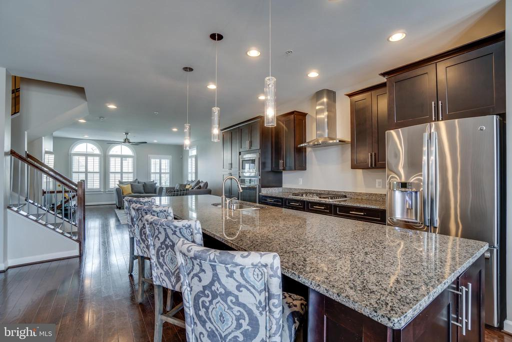 Chef kitchen with stainless steel appliances - 20668 DUXBURY TER, ASHBURN