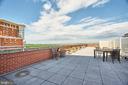 Roof Top Terrace - 2050 JAMIESON AVE #1103, ALEXANDRIA