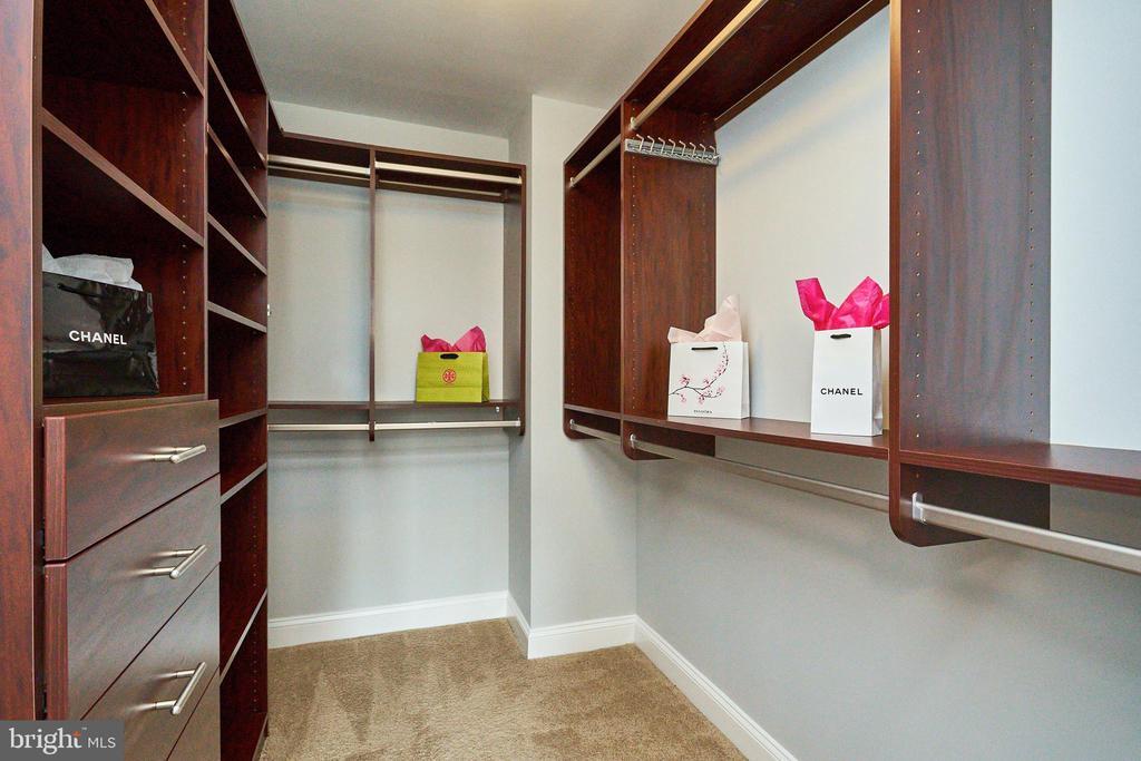 Custom Master Bedroom Closet - 2050 JAMIESON AVE #1103, ALEXANDRIA