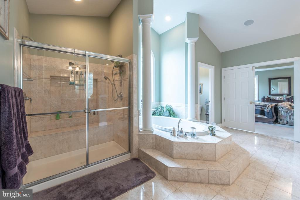 soak in your jacuzzi tub then rinse off in shower - 27531 PADDOCK TRAIL PL, CHANTILLY