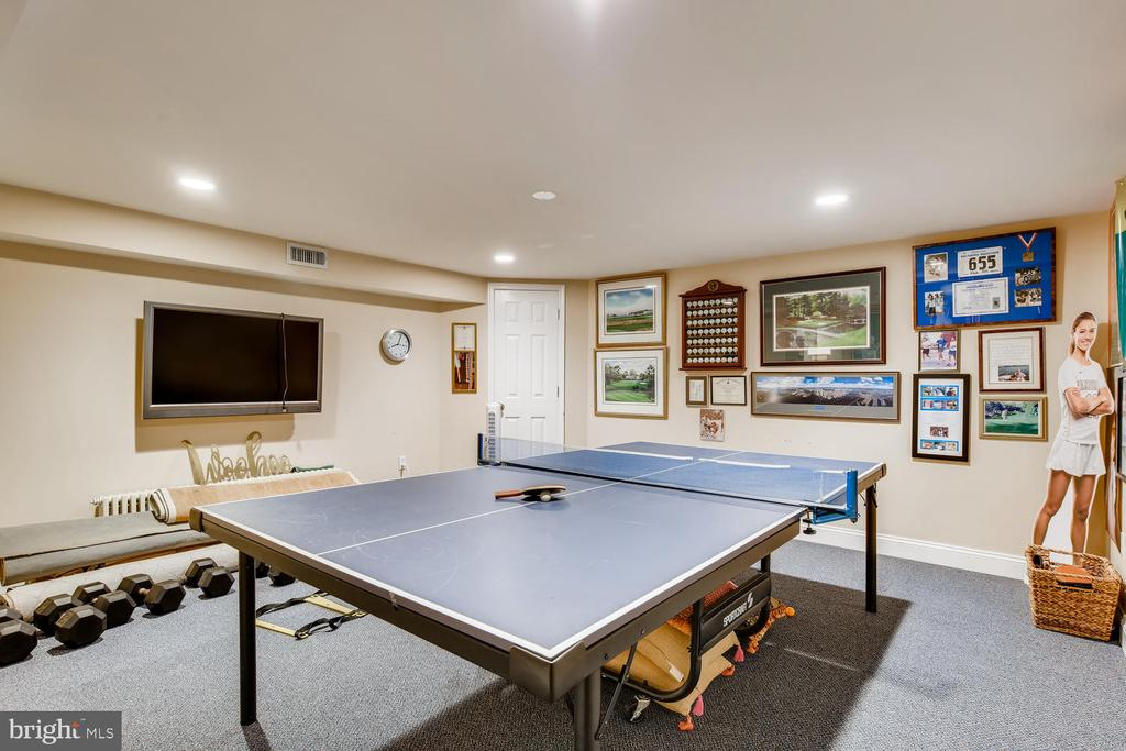 Lower Level Game/Fitness Room - 1209 BERWICK RD, TOWSON