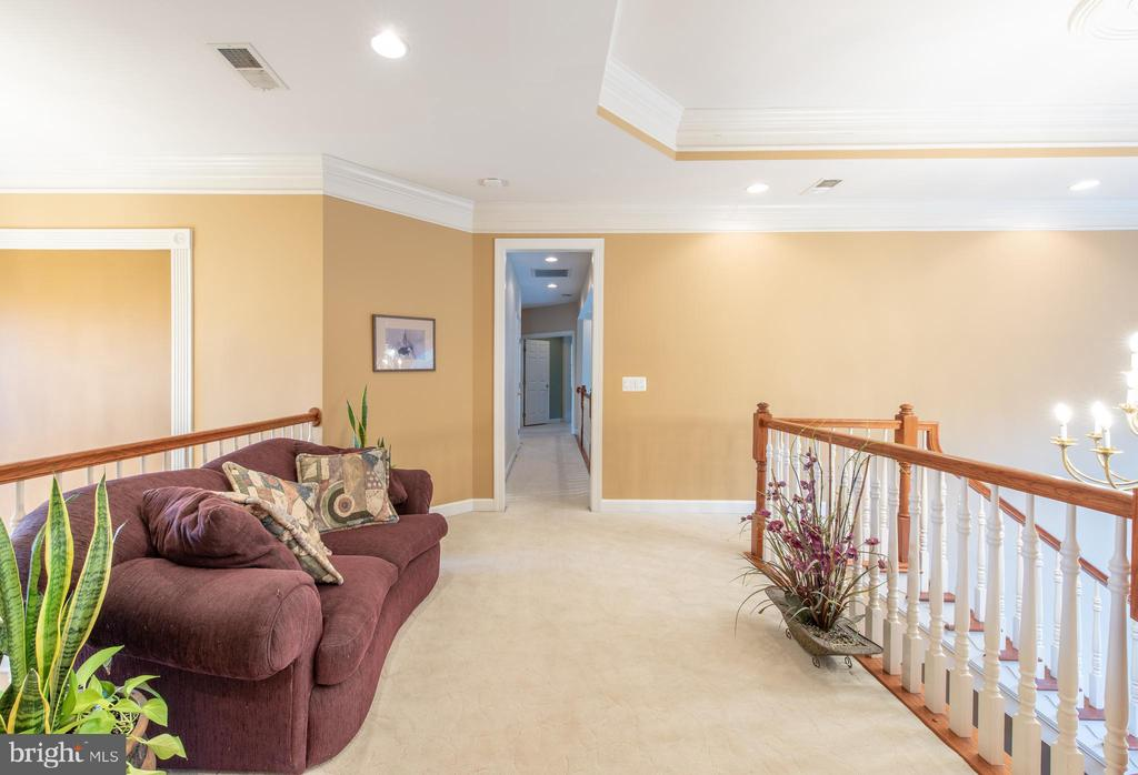 Hallway is so big you can fit a couch in it - 27531 PADDOCK TRAIL PL, CHANTILLY