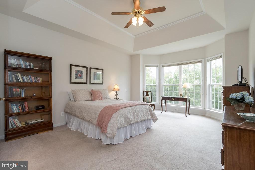 Main Level Master Bedroom - 43777 PARAMOUNT PL, CHANTILLY