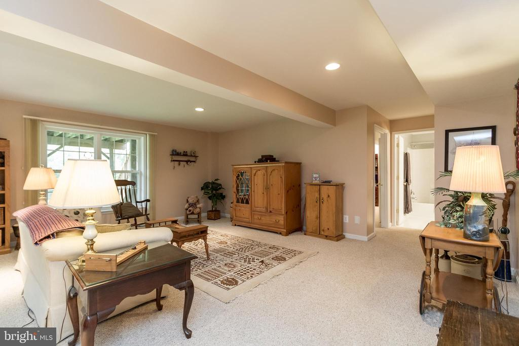 Lower Level Recreation Room - 43777 PARAMOUNT PL, CHANTILLY