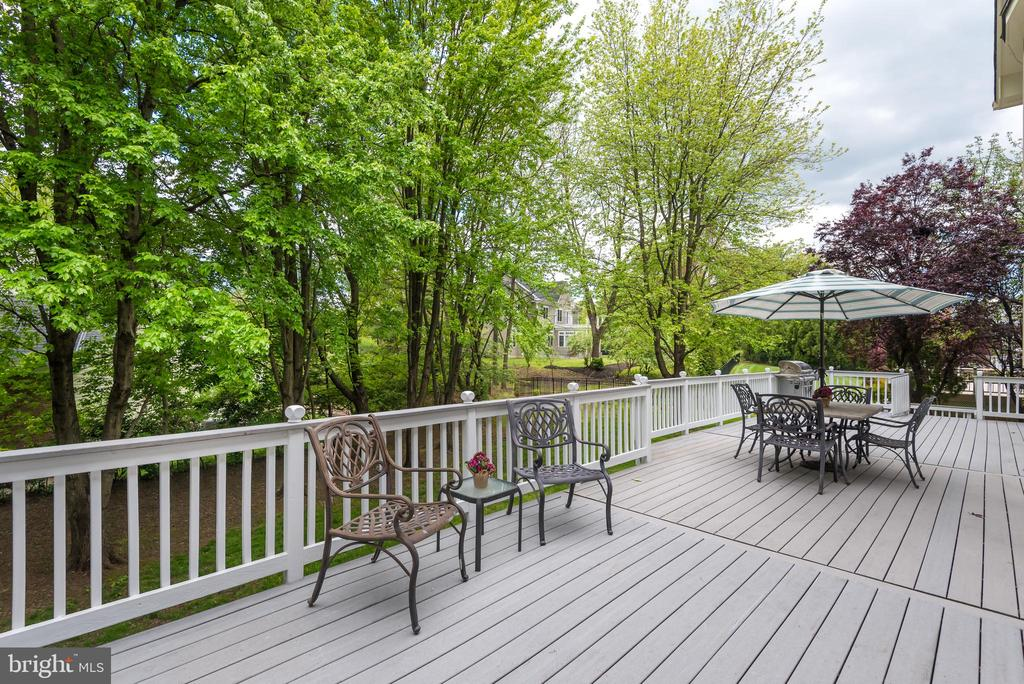 The Perfect Deck For Lounging or Entertaining - 9459 DERAMUS FARM CT, VIENNA