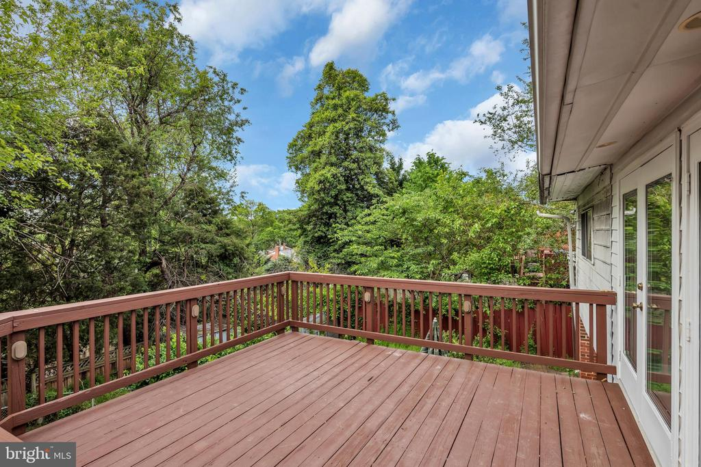Deck backing to trees for added privacy - 36 S INGRAM ST, ALEXANDRIA