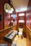 Wowza of a powder room - 719 NORTH CAROLINA AVE SE, WASHINGTON
