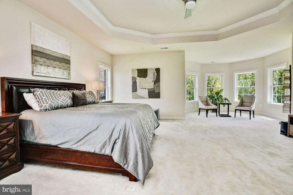 Master Bedroom Suite w/ Tray Ceiling - 13029 HIGHGROVE RD, HIGHLAND