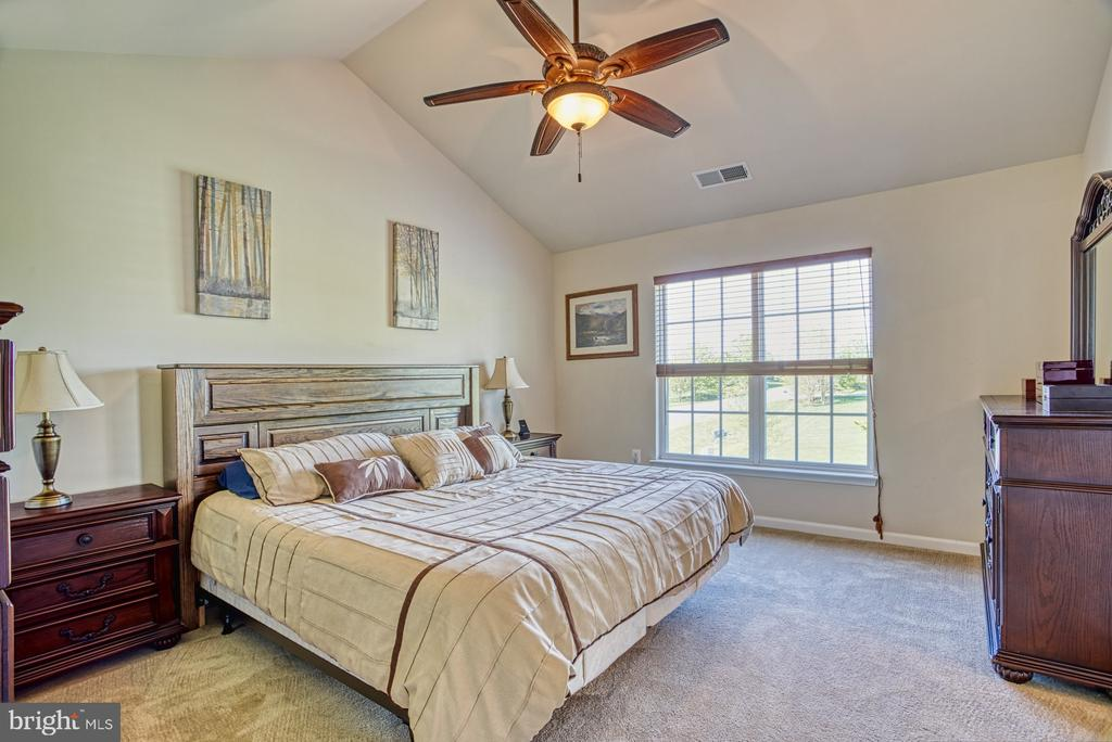Master Suite - 17663 HAMILTON HEIGHTS CT, HAMILTON
