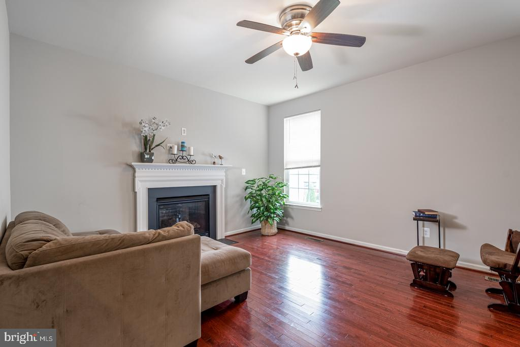 Cozy Up in the Living Room with Gar Fireplace - 25928 KIMBERLY ROSE DR, CHANTILLY