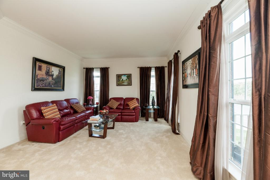 LR w crown molding and plenty of natural light - 42426 IBEX DRIVE, STERLING