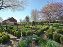 English Cutting Garden featuring boxwoods - 4105 WESTON DR, KNOXVILLE