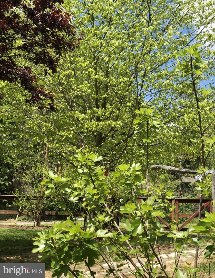 土地,用地 为 销售 在 Arnold, 马里兰州 21012 美国