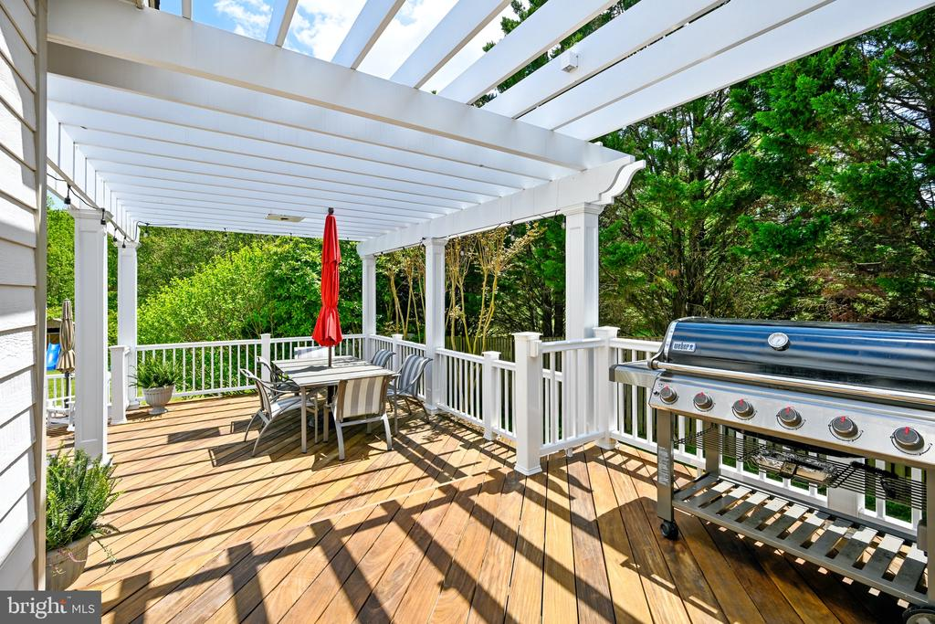 Gas Grill is located right by kitchen doors - 3417 HIDDEN RIVER VIEW RD, ANNAPOLIS
