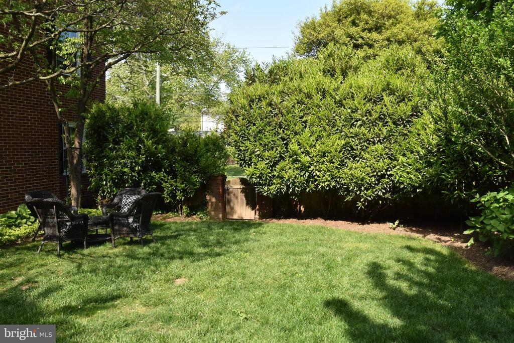 Back yard - 7600 GLENDALE RD, CHEVY CHASE