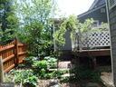 Backyard - 1127 SHORT ST, ANNAPOLIS
