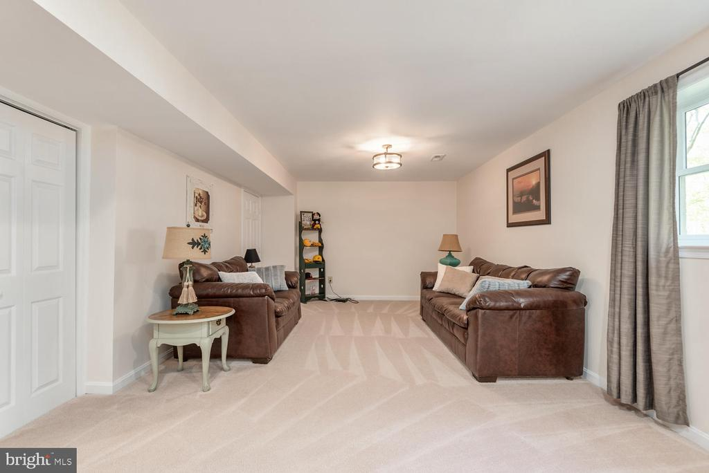 Lower level living area has closet and storage! - 325 SANDY RIDGE RD, FREDERICKSBURG