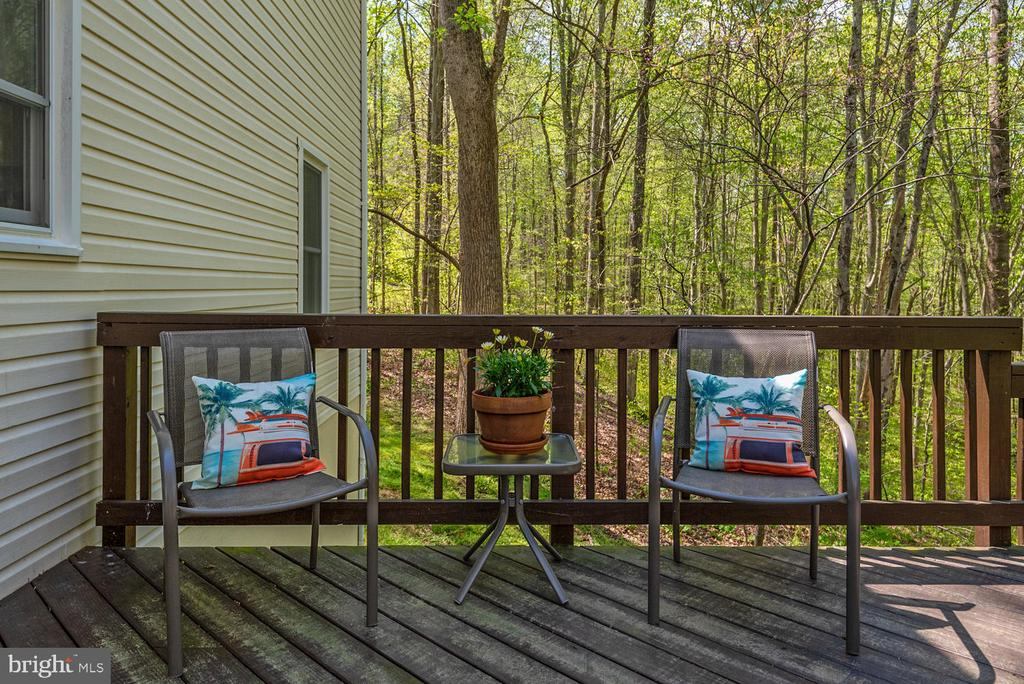 Top deck additional seating space. - 325 SANDY RIDGE RD, FREDERICKSBURG