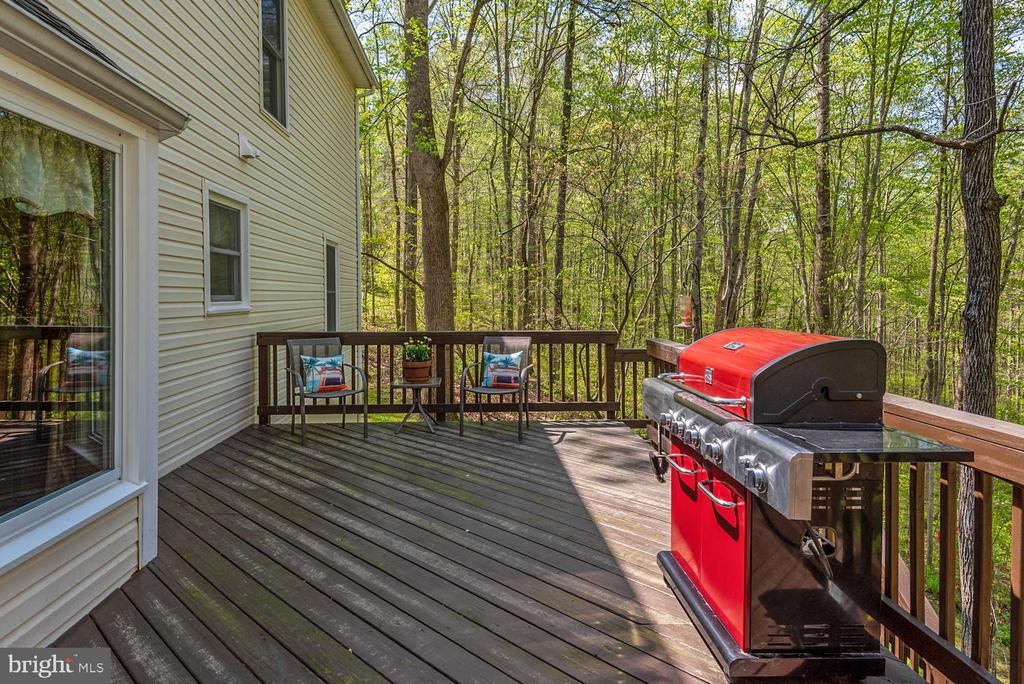 Top deck has room loads of room for entertaining. - 325 SANDY RIDGE RD, FREDERICKSBURG