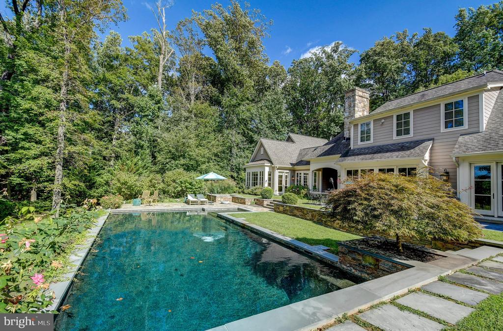 Natural salt water pool - 28 CAVESWOOD LN, OWINGS MILLS