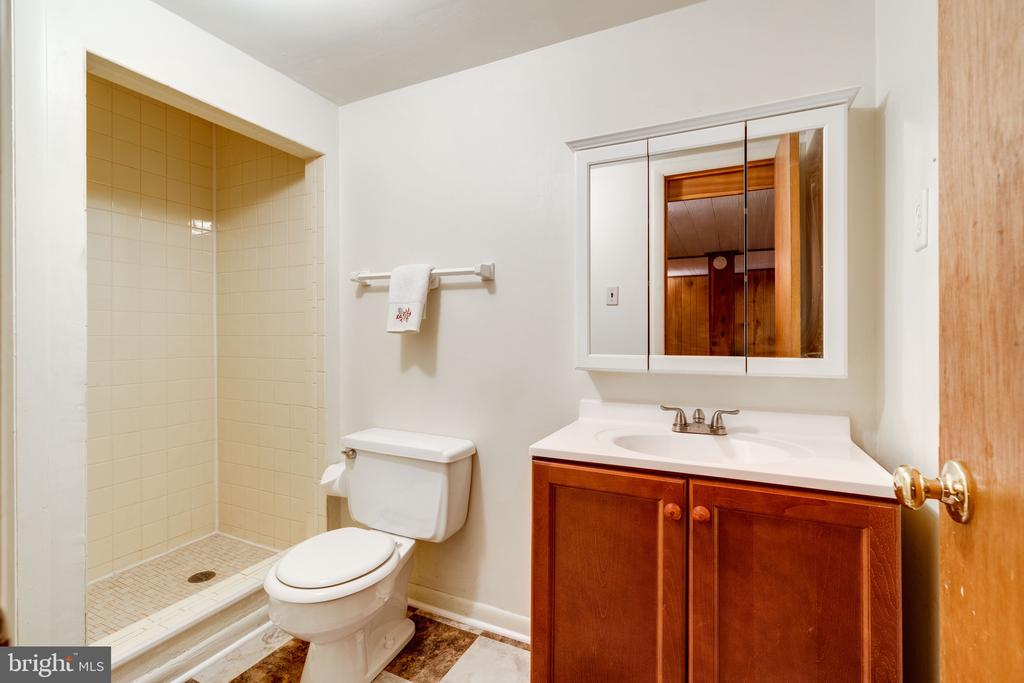 Lower level-full bath - 3634 CAMELOT DR, ANNANDALE