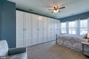 Master bedroom with Ikea closet system. - 214 WOODSTREAM BLVD, STAFFORD
