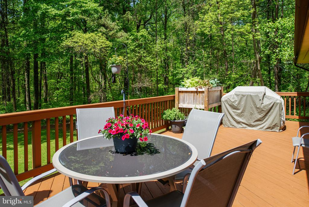 The Views!! - 39225 FOXHILL RD, LEESBURG