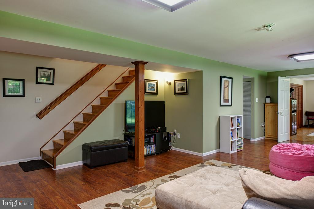 Lower Level Rec Room - 39225 FOXHILL RD, LEESBURG