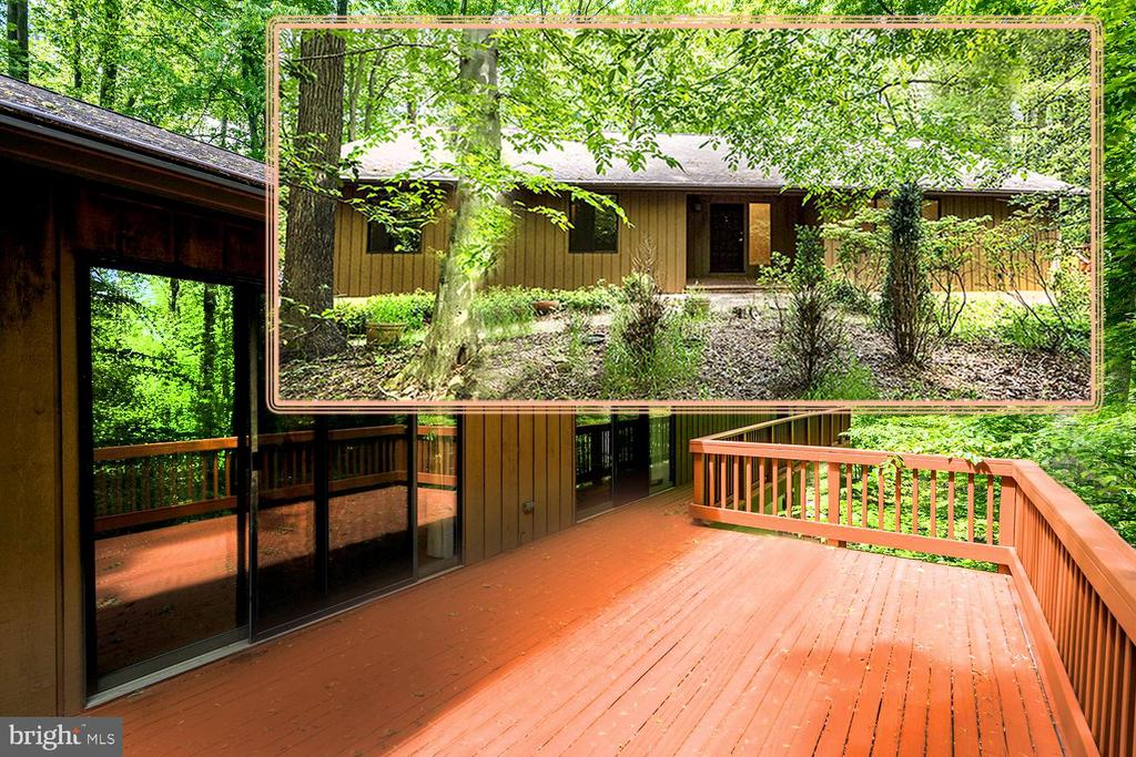Woodland Contemporary Inspired by Natural Environs - 1693 ALICE CT, ANNAPOLIS