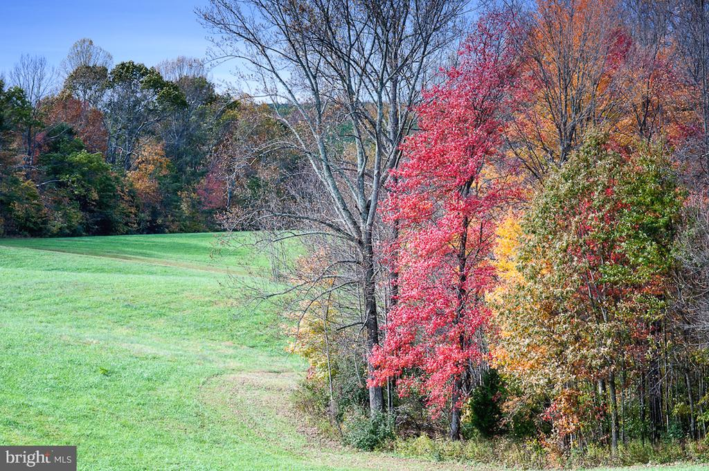 Fall along the farm - 2921 DUCKER DR, LOCUST GROVE